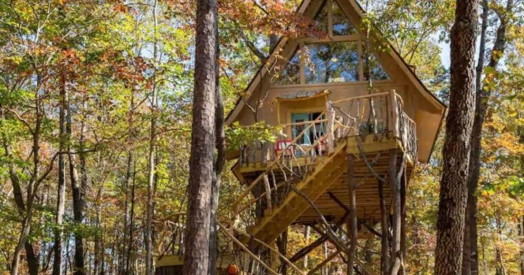 Gorgeous Tiny House Among The Trees