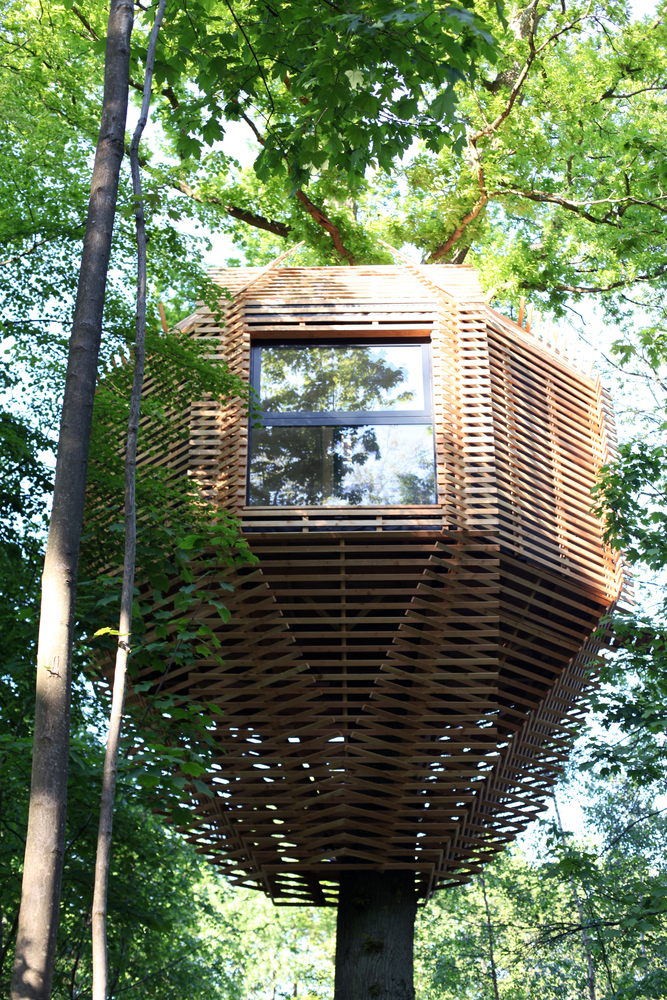 ORIGIN Tree House 11 1