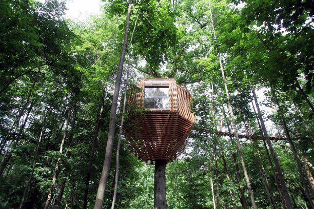 ORIGIN Tree House 13