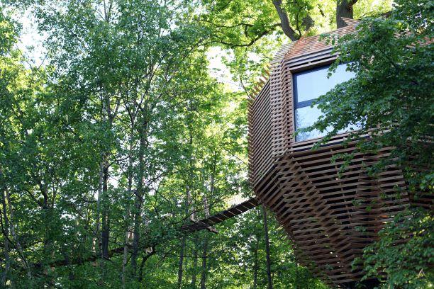 ORIGIN Tree House 2
