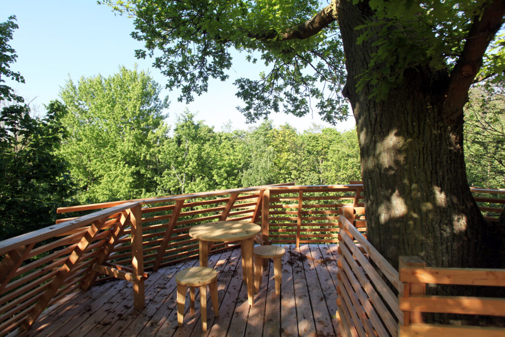 ORIGIN Tree House 20 1