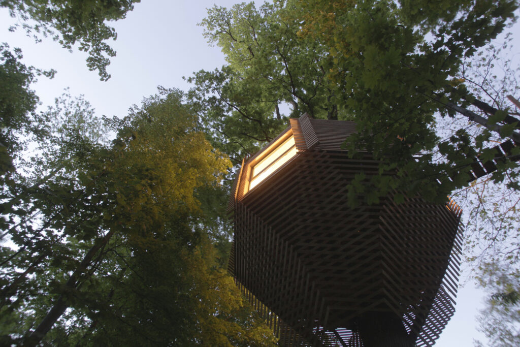 ORIGIN Tree House 22 1