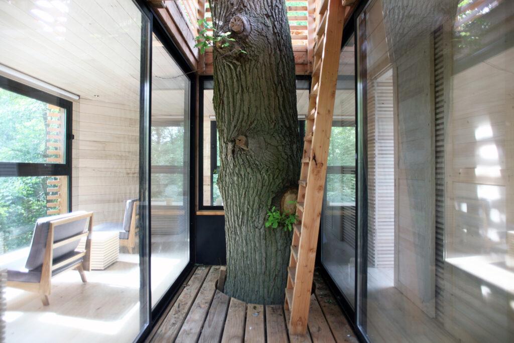 ORIGIN Tree House 4 1