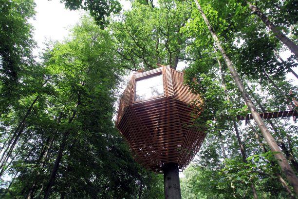 ORIGIN Tree House 8