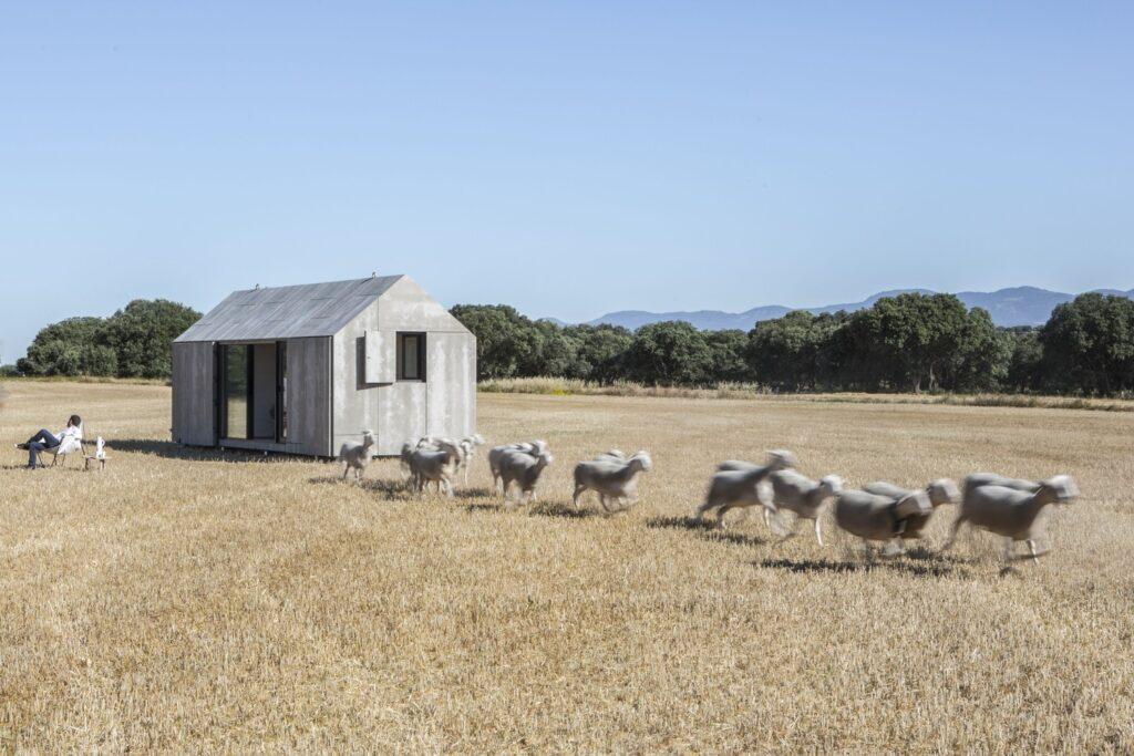 Portable Tiny House APH80 19