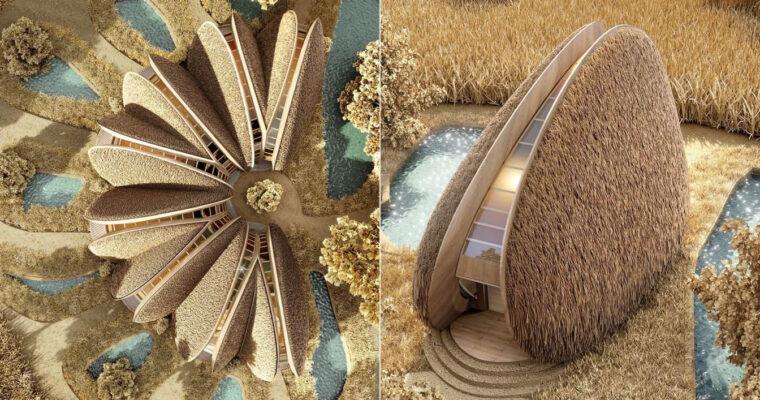 Mussel-Shaped Shell Tiny House, Ukraine