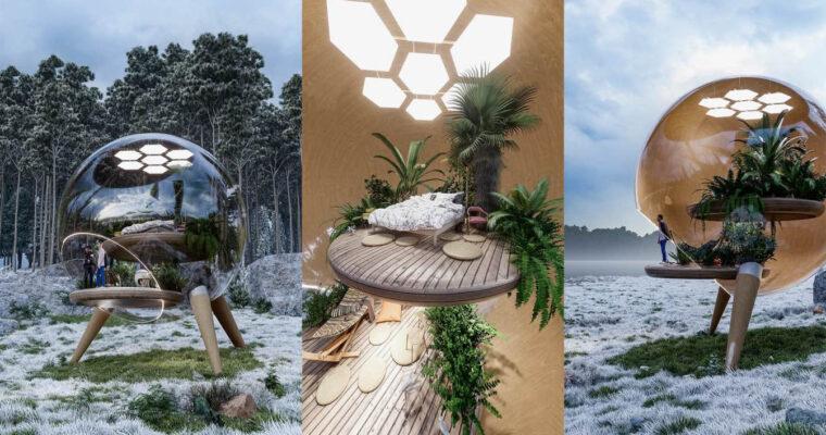 Fishbowl House by Veliz Arquitecto