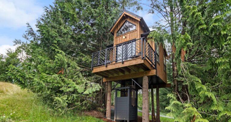 Private Designed The Birdhouse